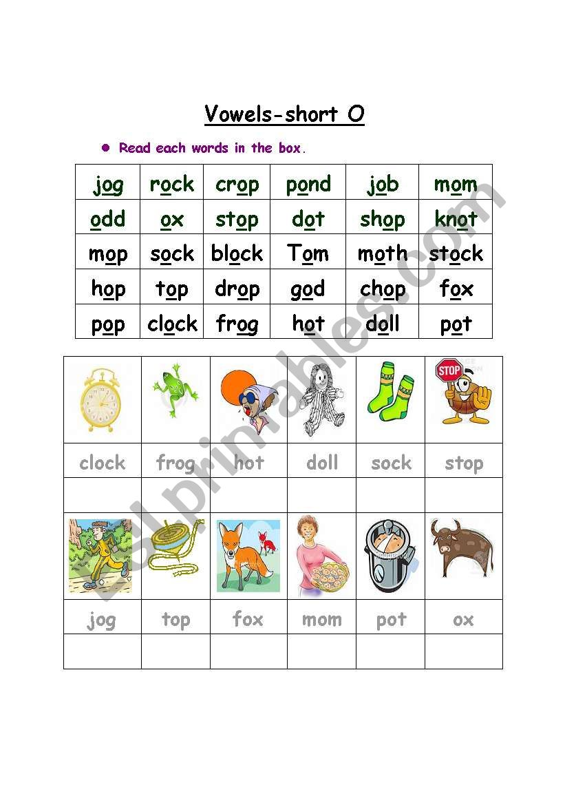 Vowel- short O  worksheet