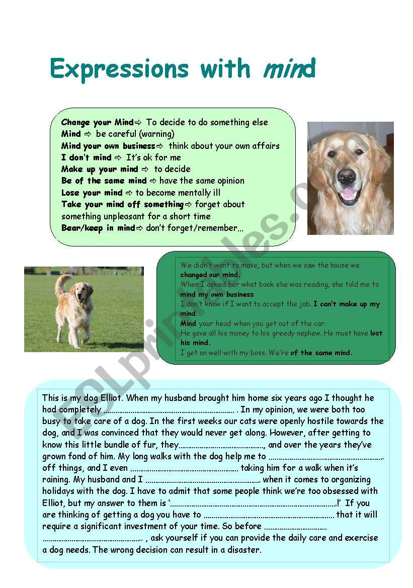 Expressions with ´mind´ - ESL worksheet by nurja