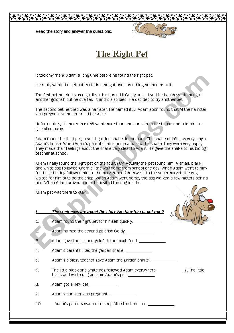 The Right Pet worksheet