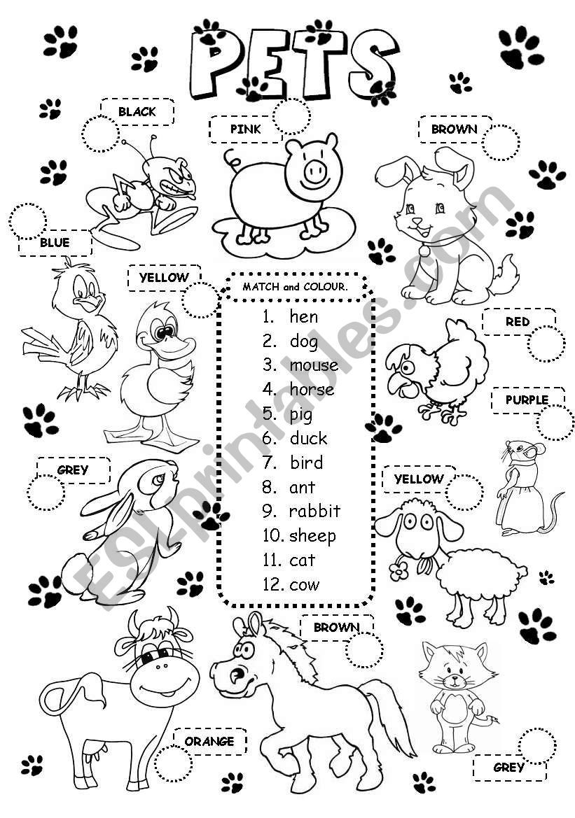 Pets worksheet