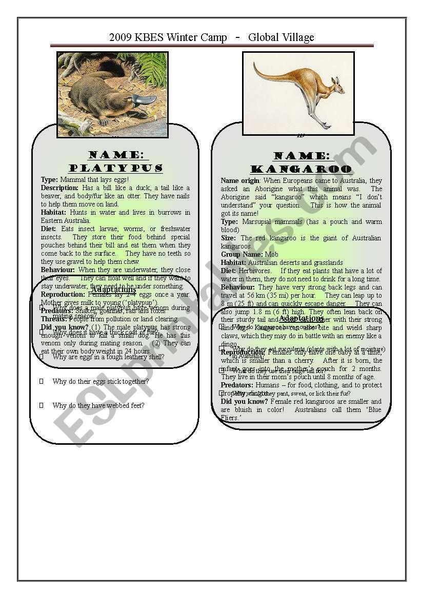 Australian Animals 1/3 worksheet