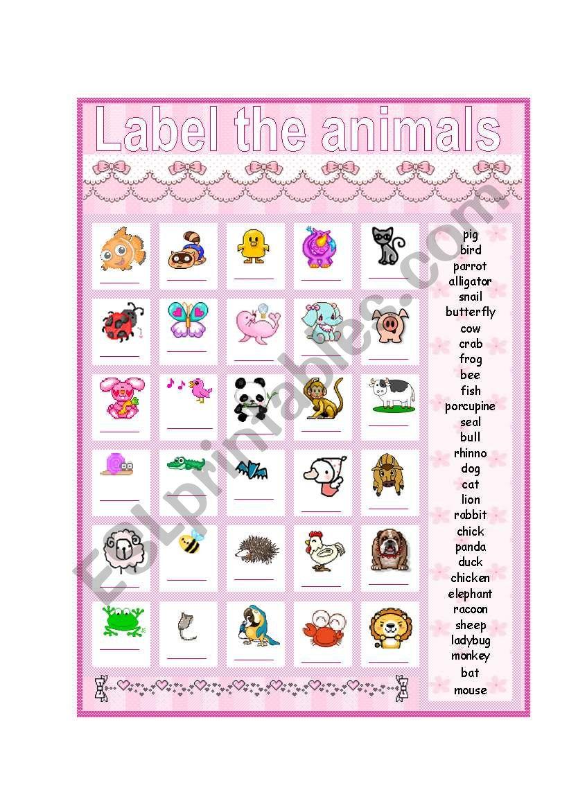 Label the animals worksheet