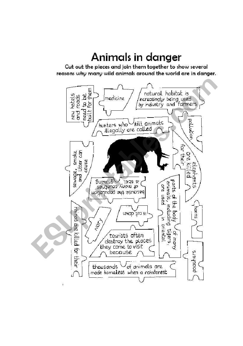 animals in danger worksheet