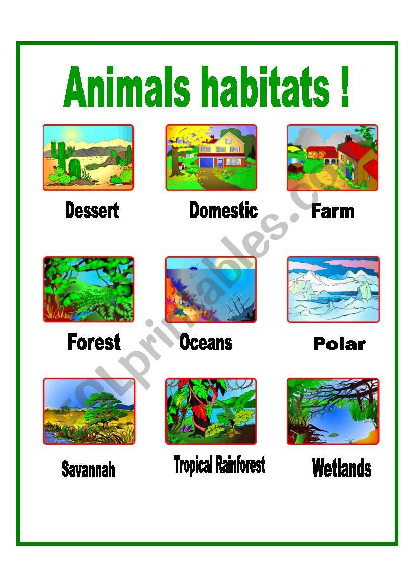 animals habitats esl worksheet by aiyana. Black Bedroom Furniture Sets. Home Design Ideas
