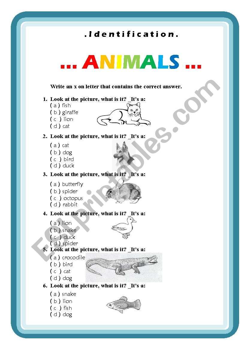 Animals, identification worksheet