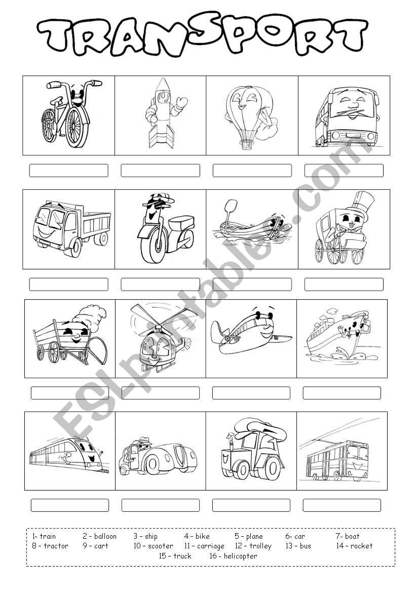 Transport 2 worksheet