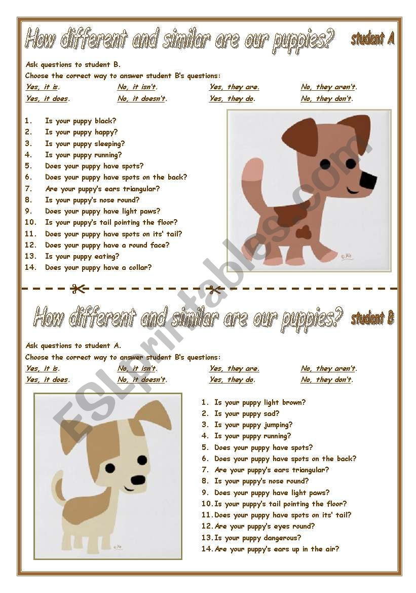 ARE OUR PUPPIES TWINS? worksheet