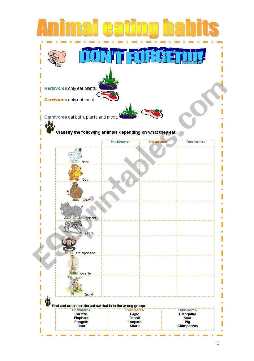 Learning about animals worksheet