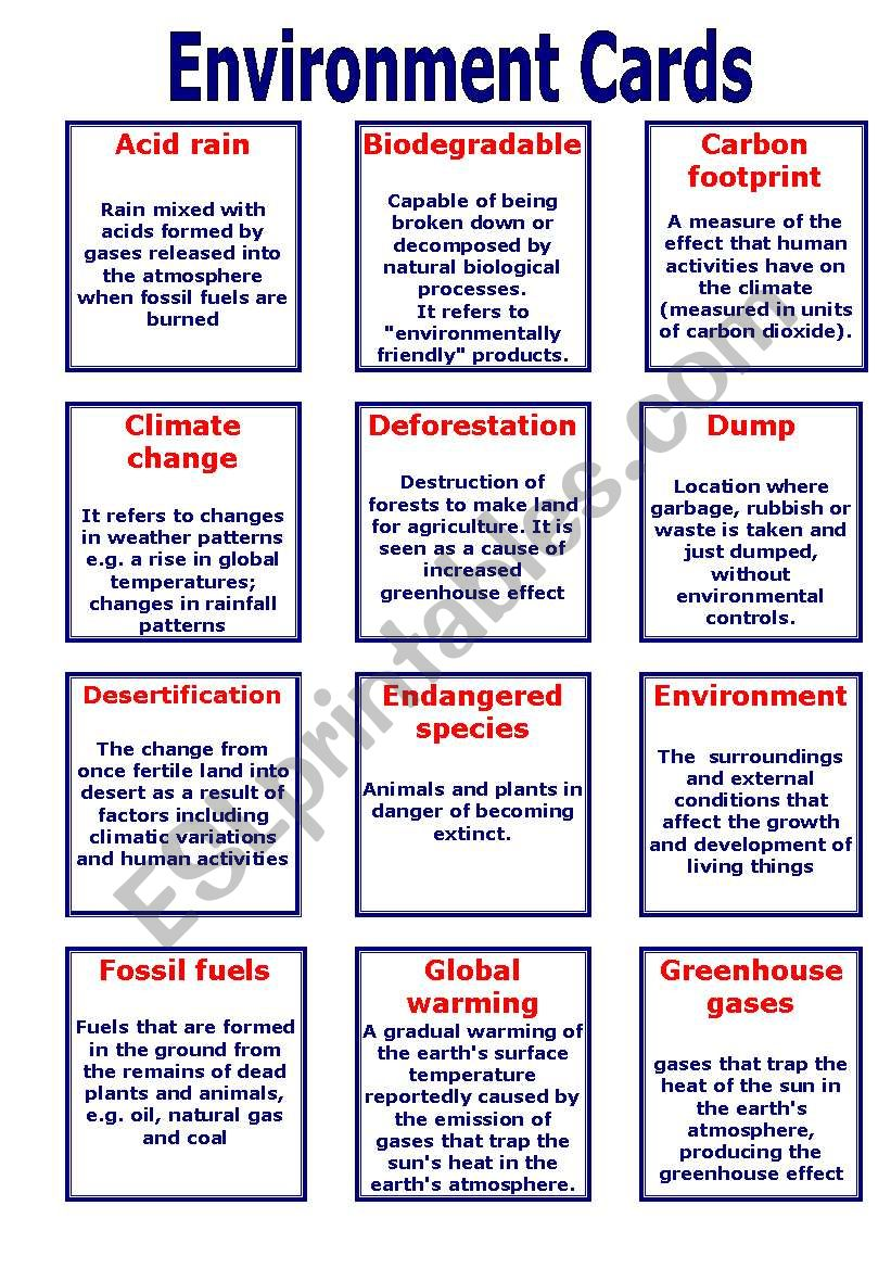 Environment Cards worksheet