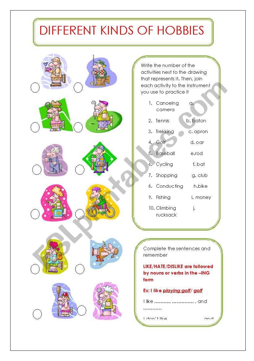 DIFFERENT KINDS OF HOBBIES worksheet