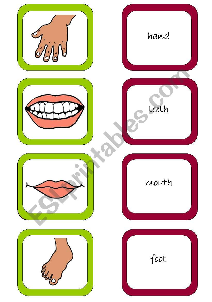 Memory card game (2/3) worksheet