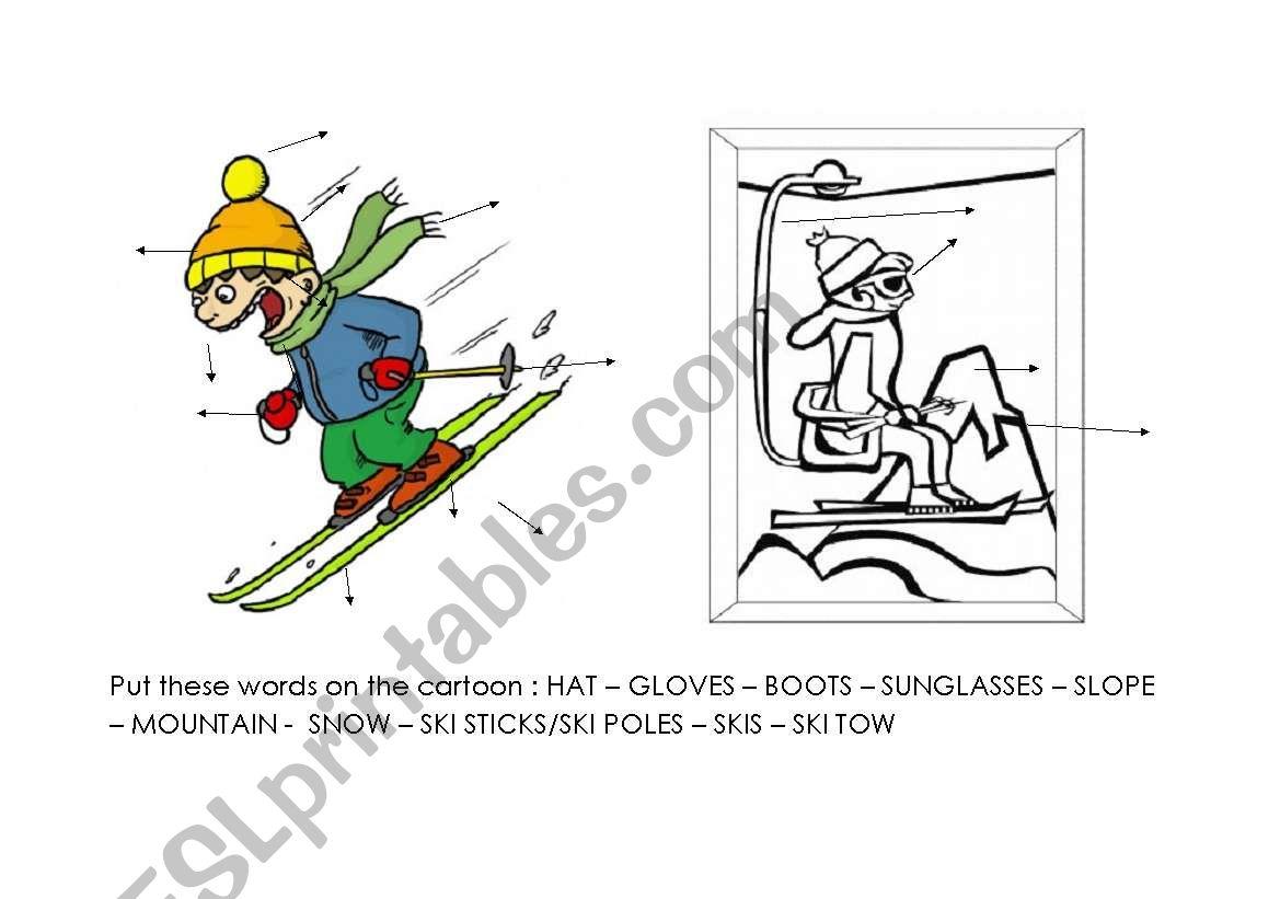 ski vocabulary worksheet