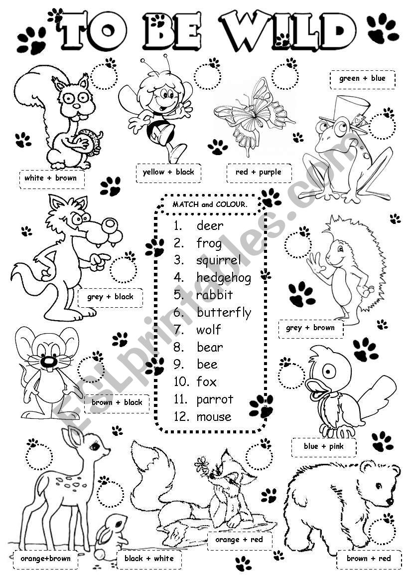 To be wild - animals (2/3) worksheet