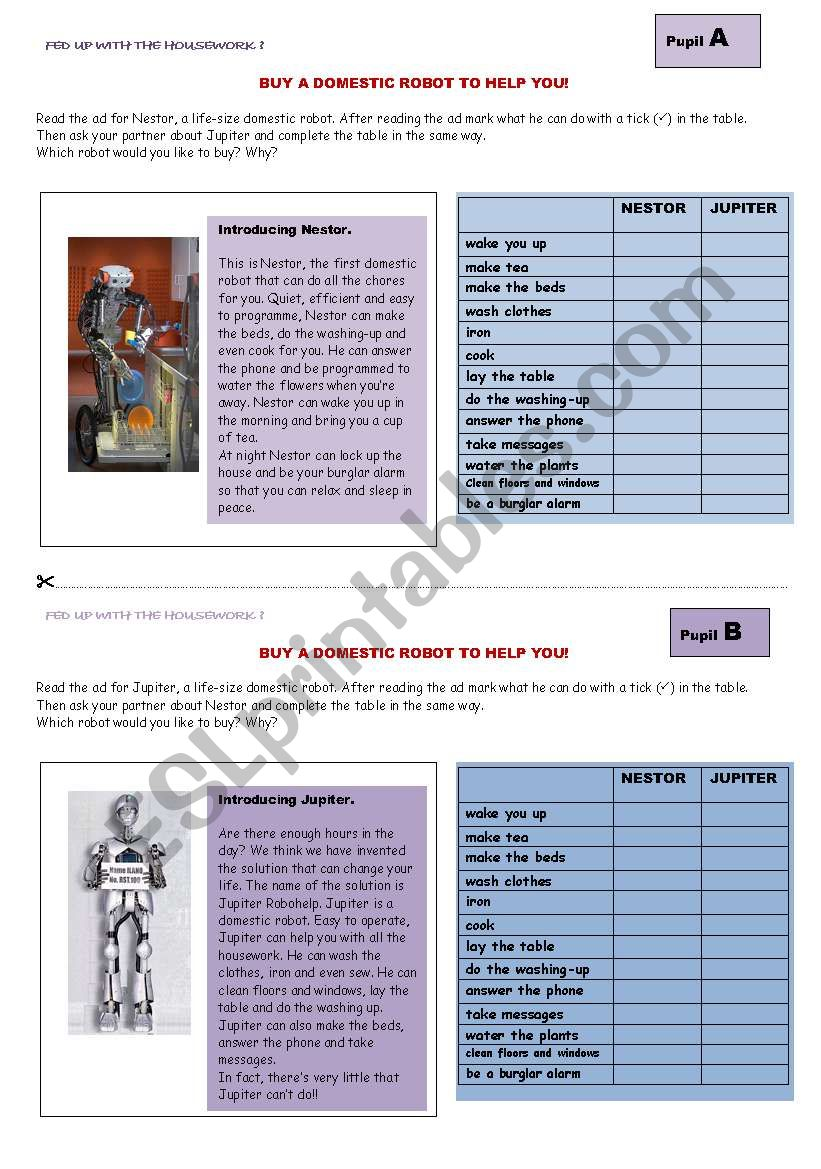 buy a domestic robot worksheet