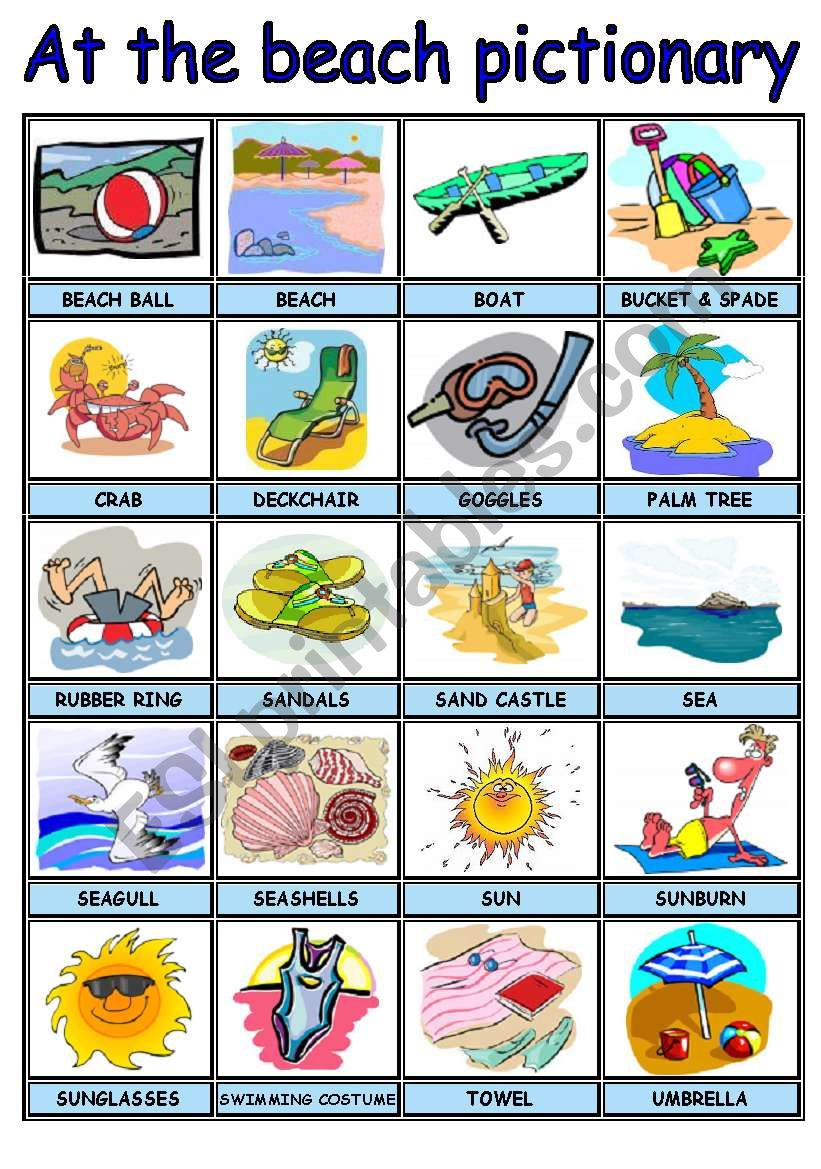 SUMMER / AT THE BEACH PICTURE DICTIONARY