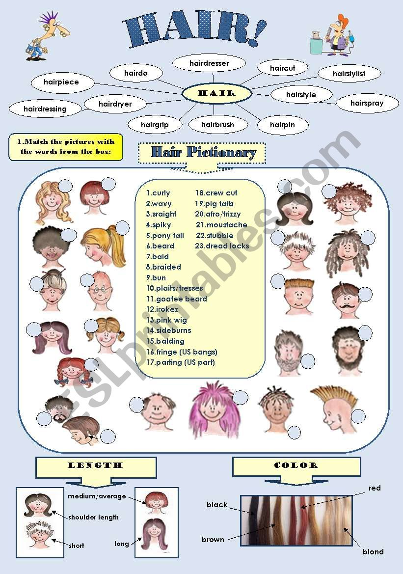 Fun Vocabulary Set Hair Pictionary And Hair Idioms  Pages With