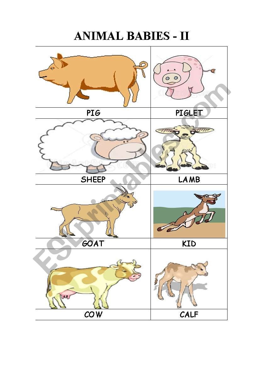 ANIMAL BABIES - II worksheet