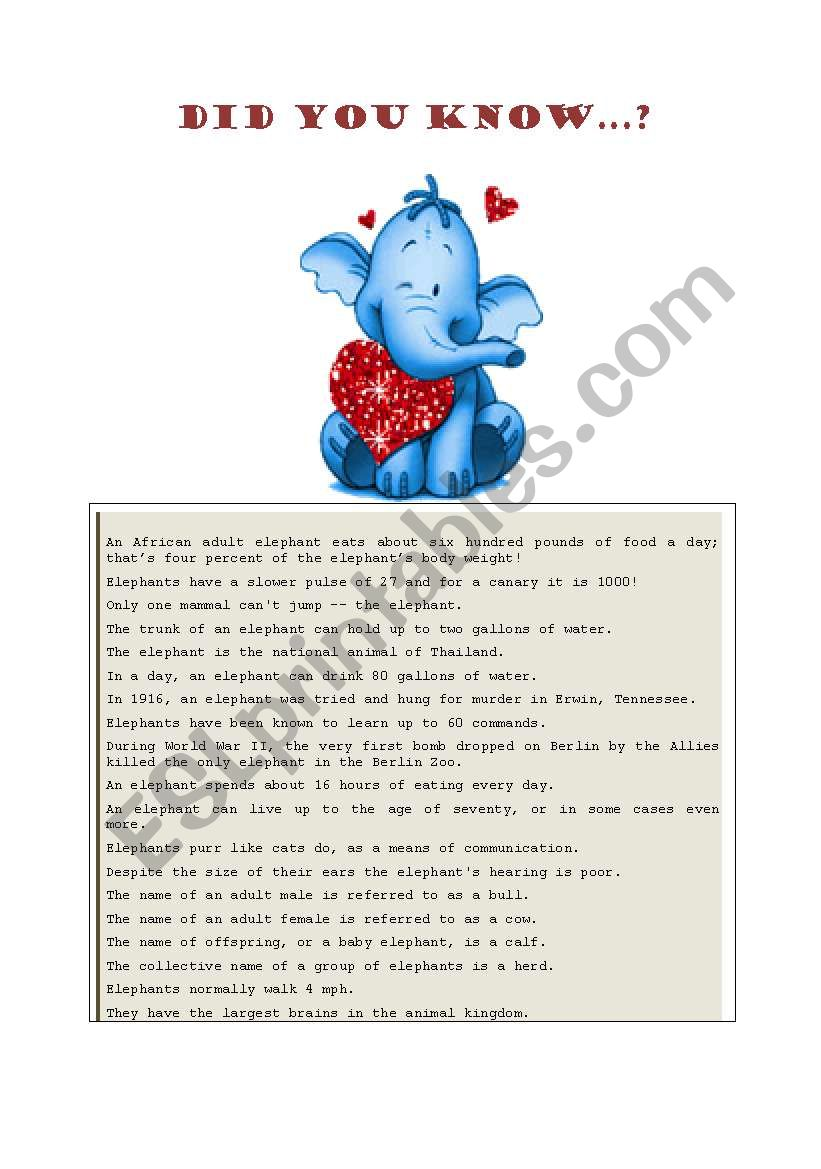 Fun facts about elephants worksheet