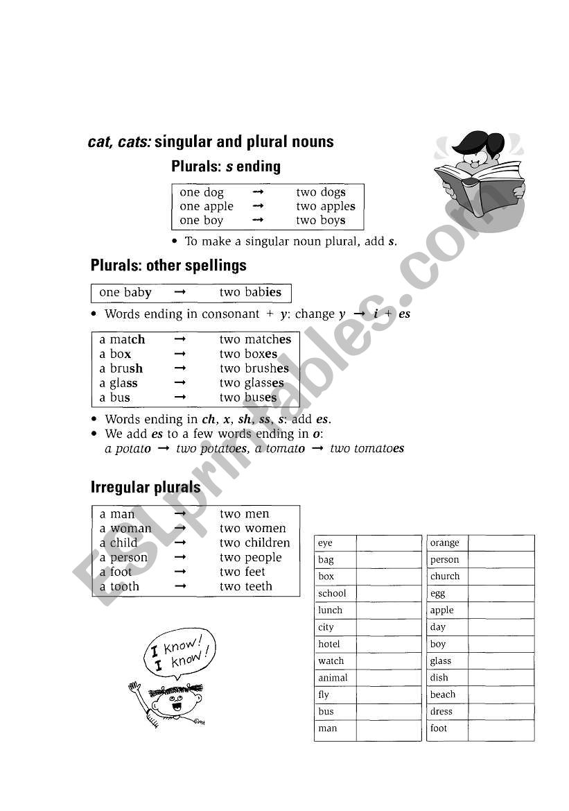 Singular And Plural Esl Worksheet By Maralves
