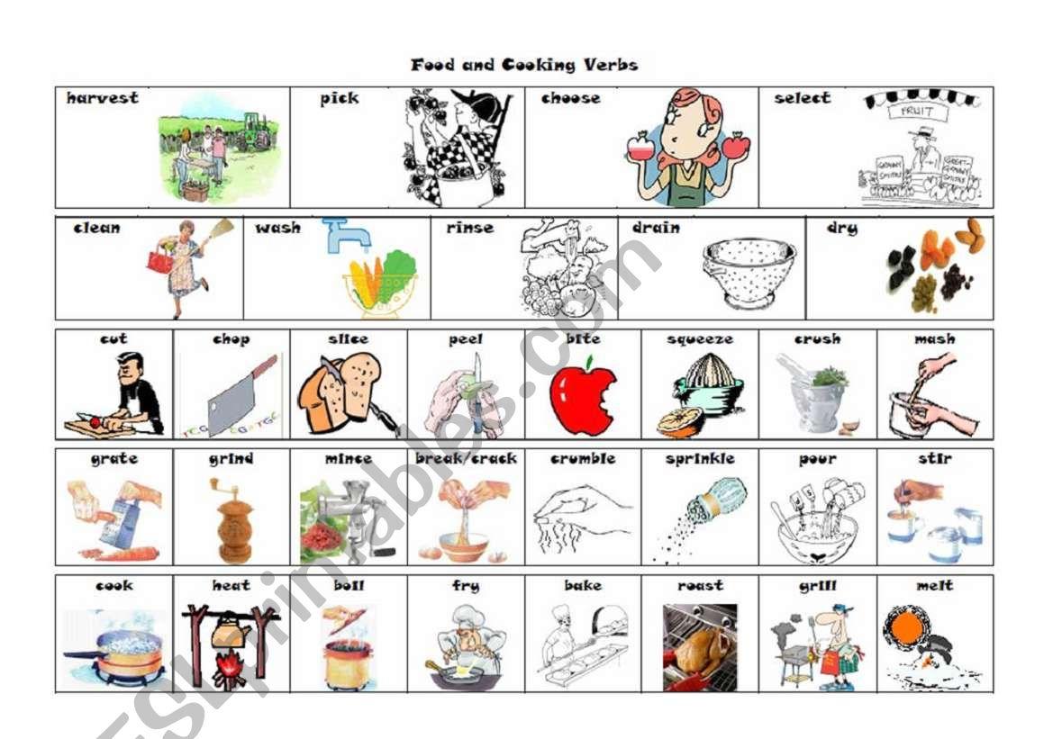 Verbs of Food and Cooking worksheet