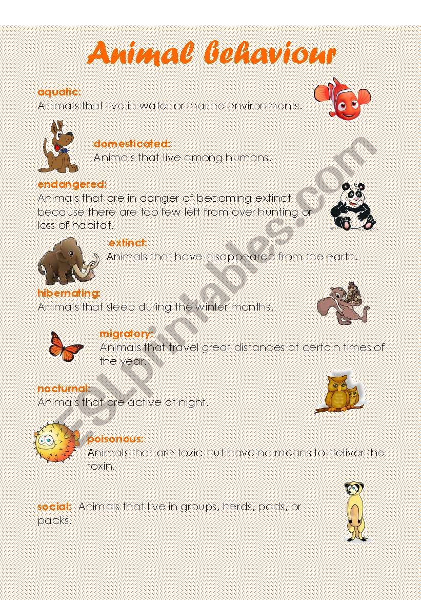 english worksheets animal behaviour 5 pages. Black Bedroom Furniture Sets. Home Design Ideas