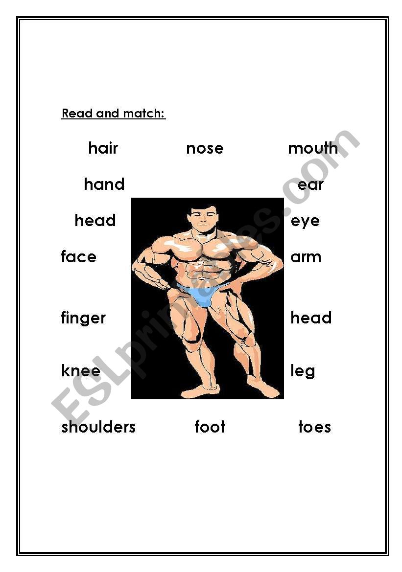 body worksheet