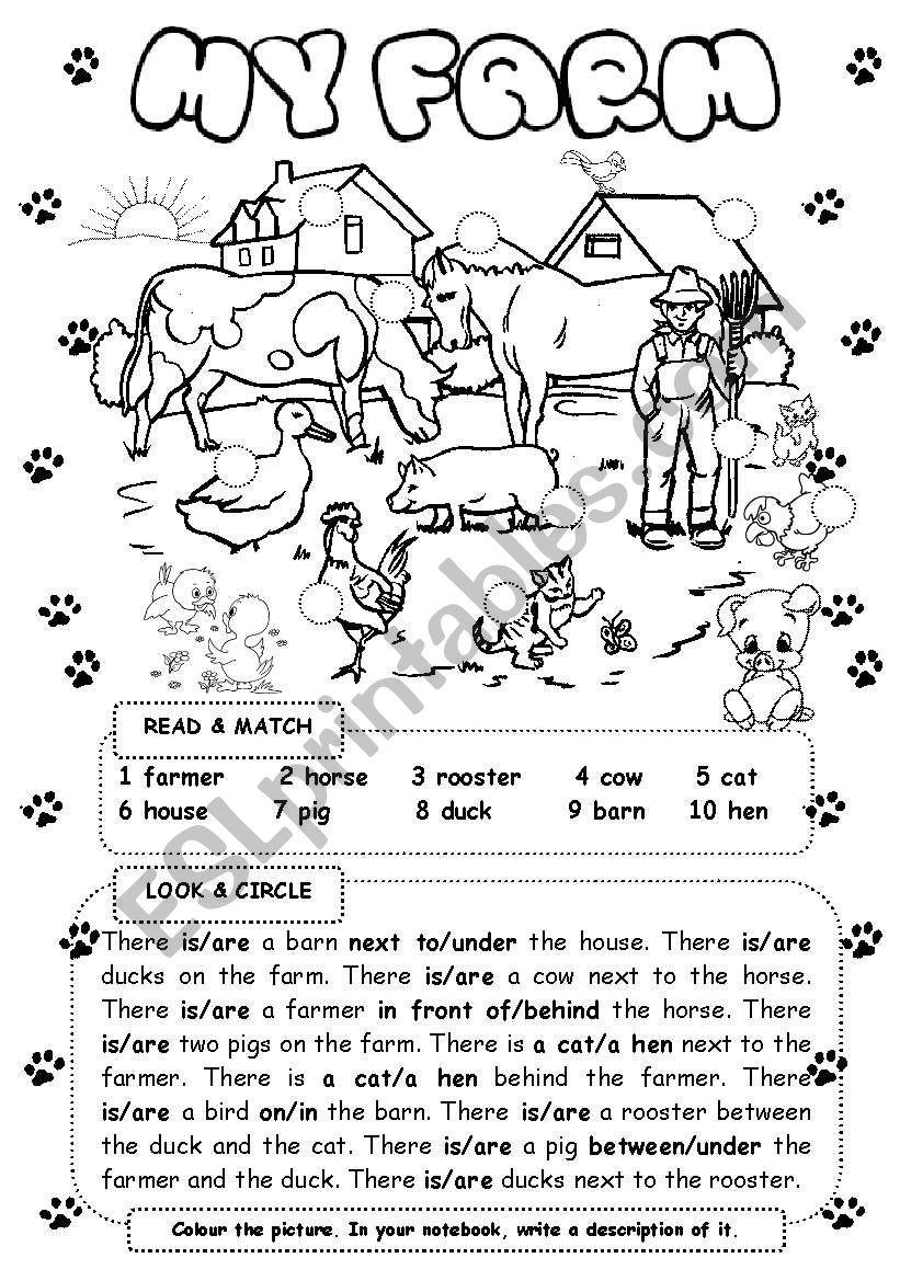 My farm worksheet
