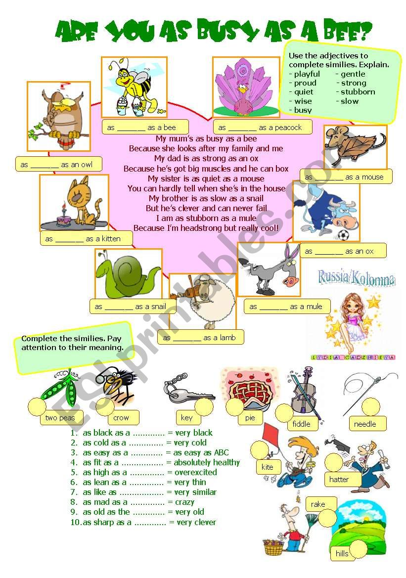 ARE YOU AS BUSY AS A BEE? worksheet
