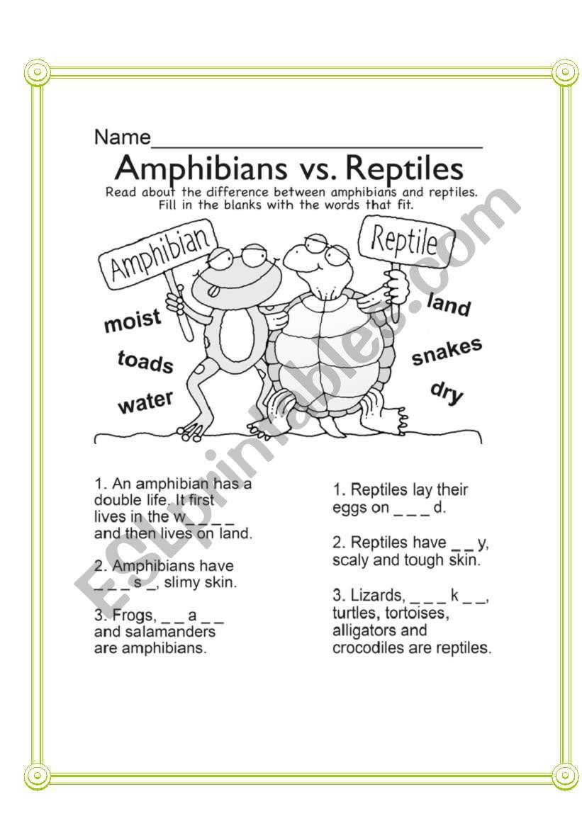 Amphibians vs Reptiles worksheet