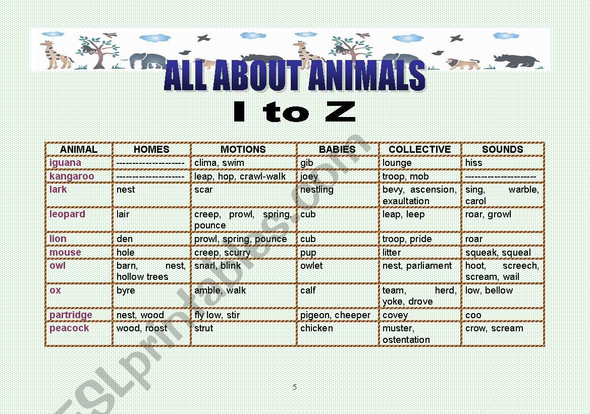 All about animals 2 - I to Z worksheet