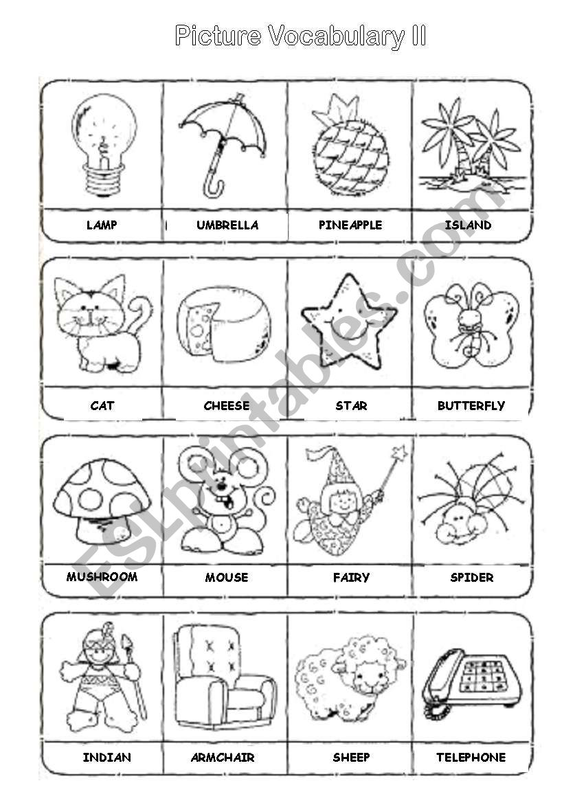 Picture Vocabulary II worksheet