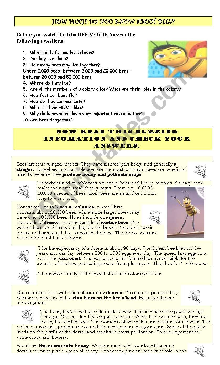 BEE MOVIE GUIDE AND ACTIVITIES