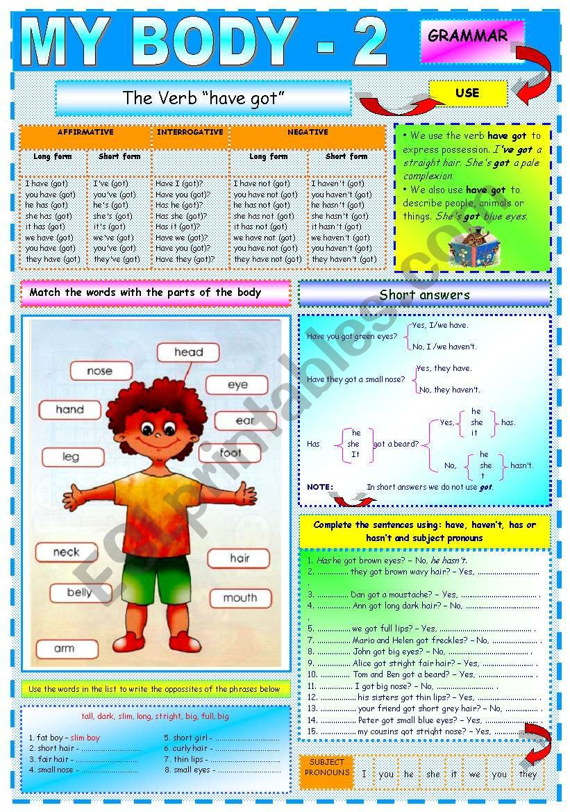 My body-2 worksheet