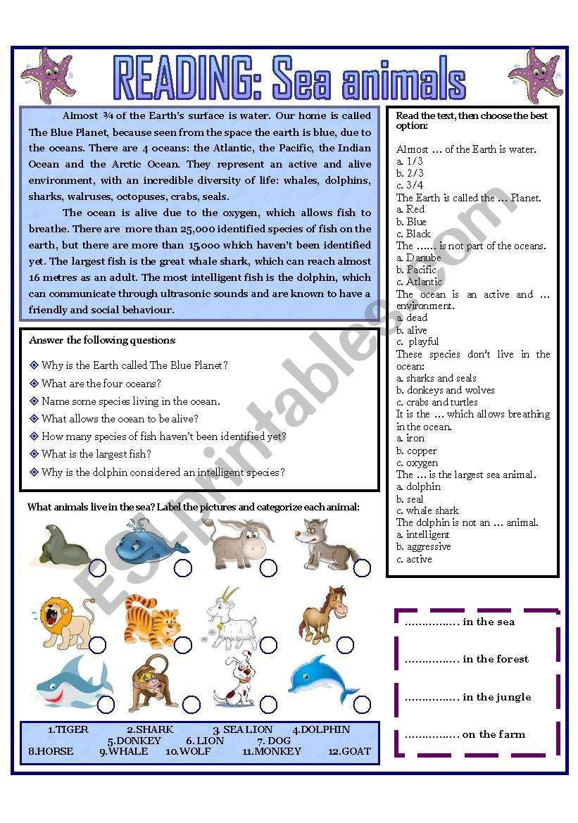 READING: SEA ANIMALS worksheet