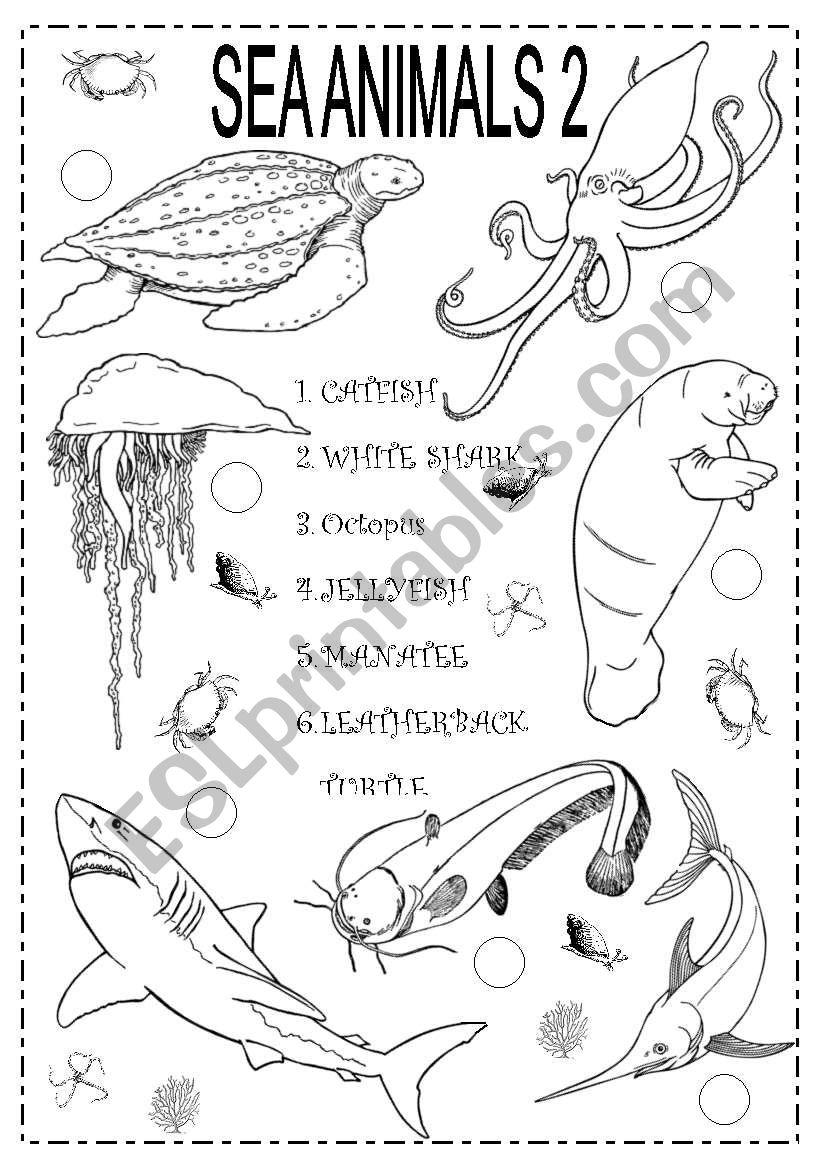 SEA ANIMALS 2 worksheet