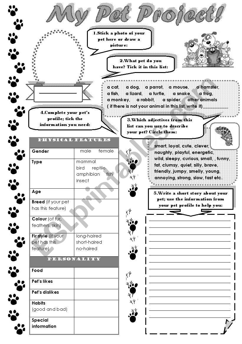 MY PET PROJECT! -  describing a pet worksheet ( writing activity )