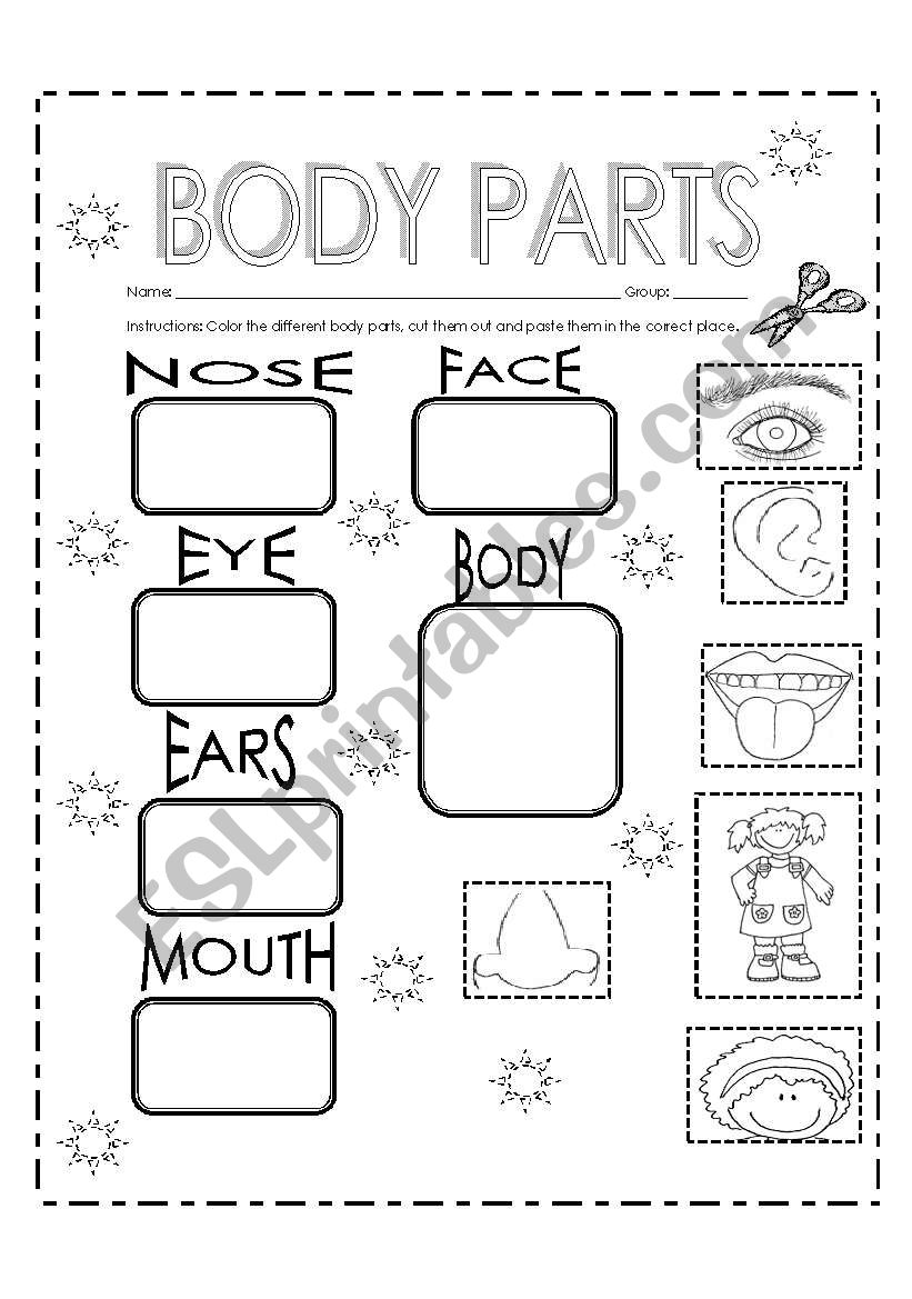Homewrok about body parts worksheet