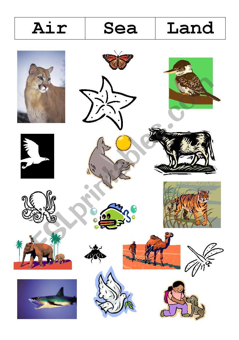 english worksheets land air and sea animals. Black Bedroom Furniture Sets. Home Design Ideas