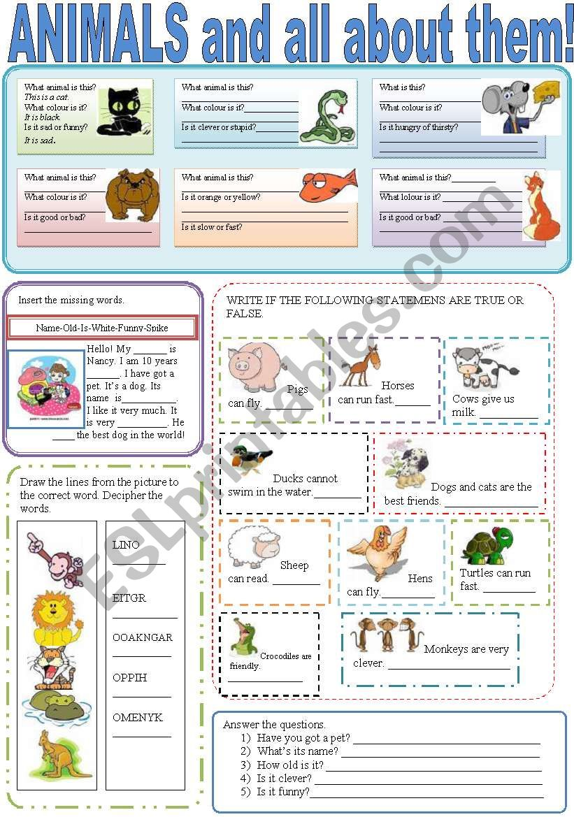 ANIMALS AND ALL ABOUT THEM! worksheet