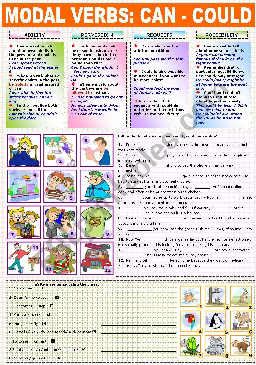 MODAL VERBS - CAN - COULD worksheet