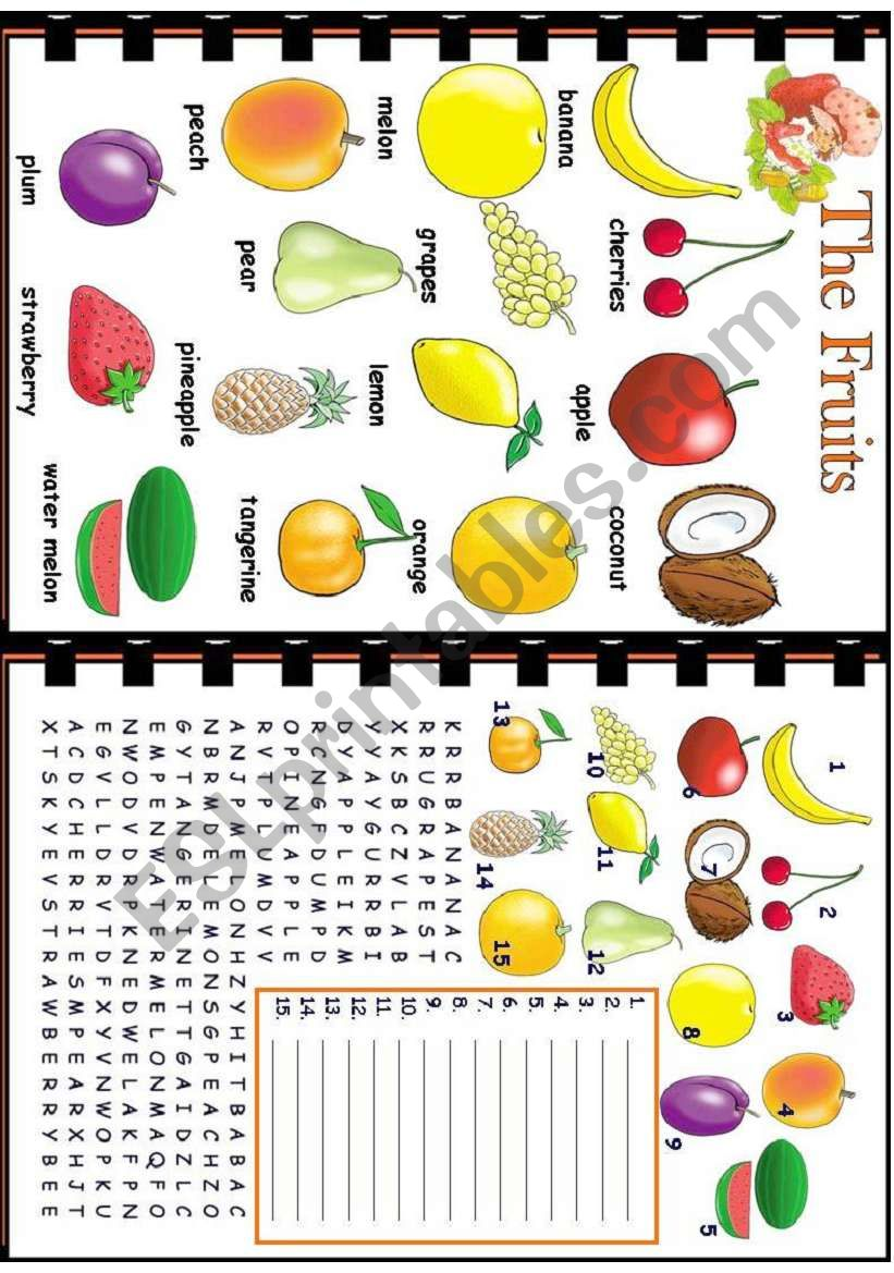 The Fruits worksheet