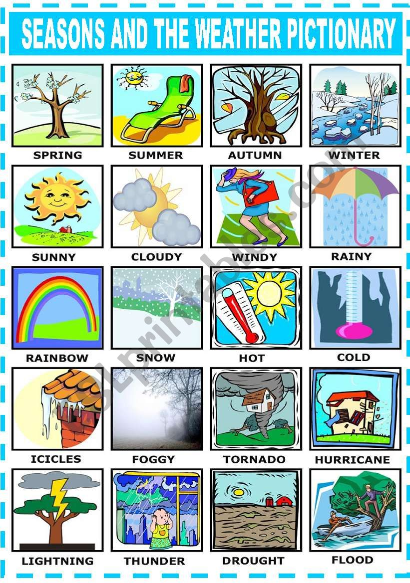 SEASONS AND THE WEATHER - PICTIONARY