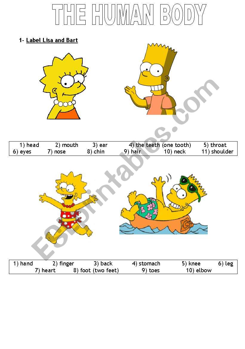 Human body to label esl worksheet by sbellevrat human body to label worksheet ccuart Image collections