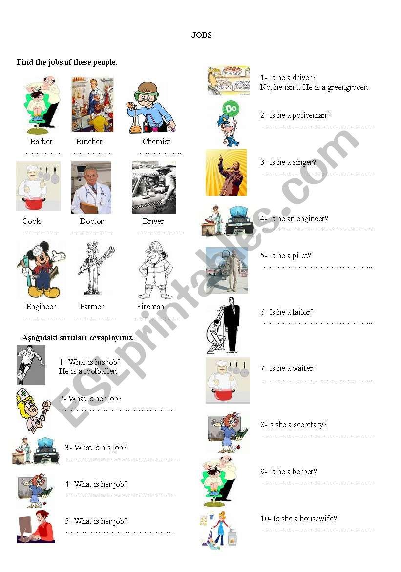 worksheet on jobs worksheet