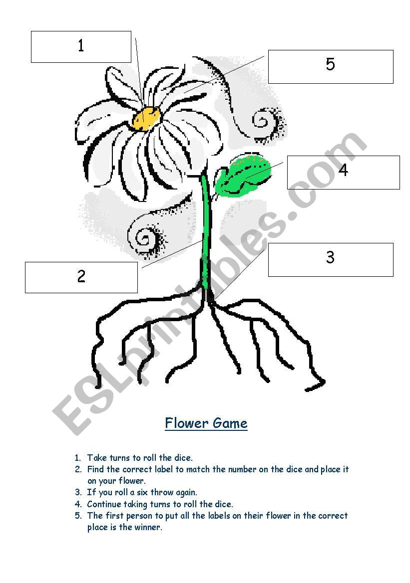 Parts of the Plant worksheet