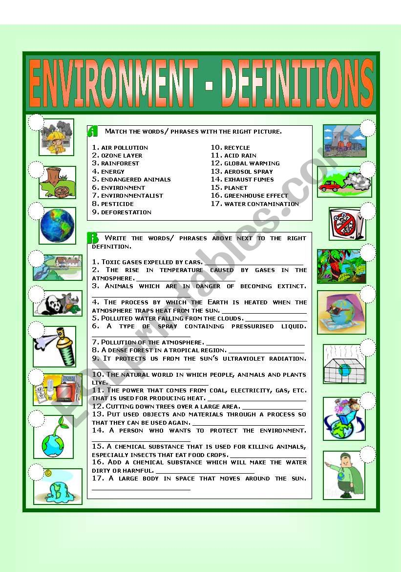 Environment - Definitions worksheet