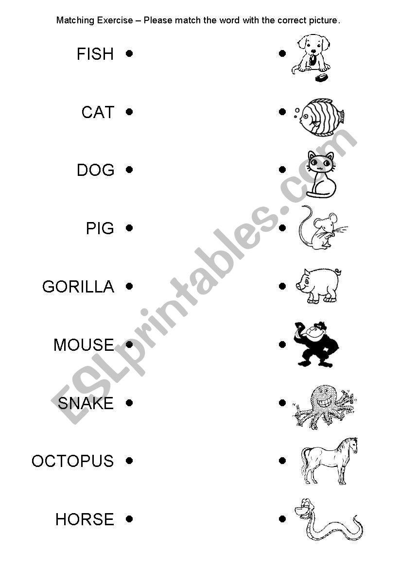 Matching Exercise - Animals worksheet