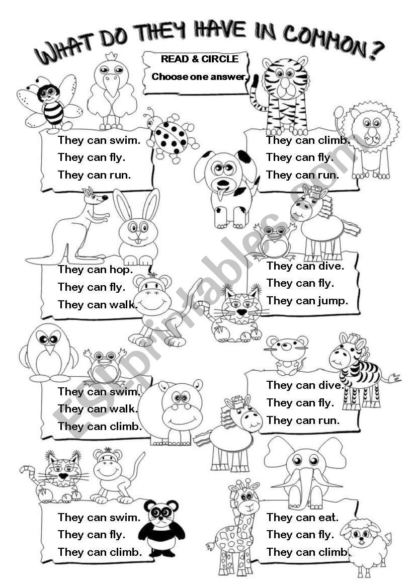 what do they have in common can esl worksheet by gabitza