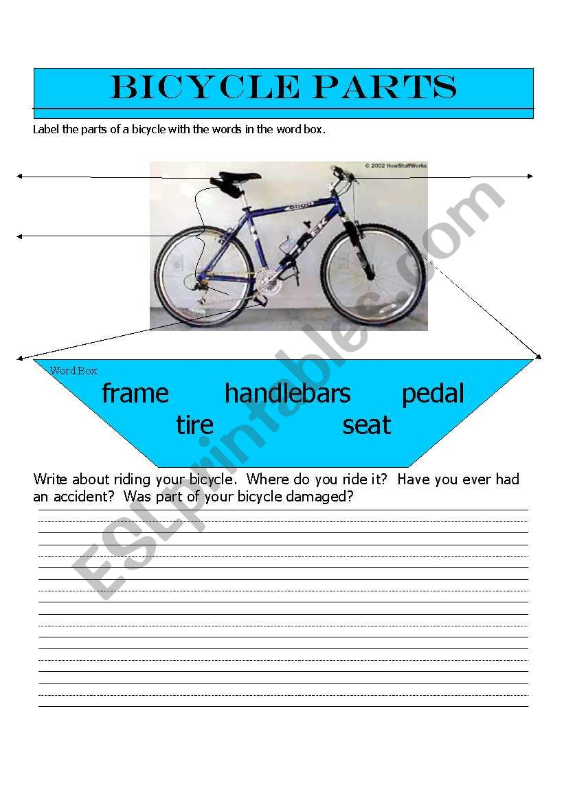 English Worksheets Bicycle Parts