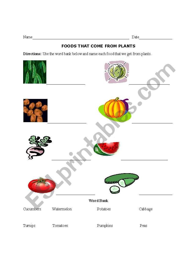 english worksheets foods we get from plants. Black Bedroom Furniture Sets. Home Design Ideas